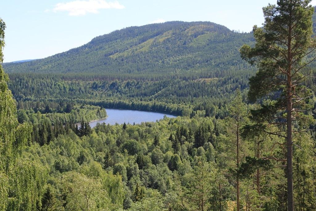 Utkikkspost nær Atna