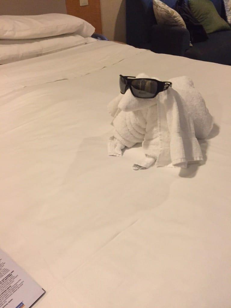 Hund av håndkle