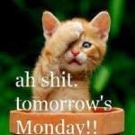 søndag, ah shit mandag