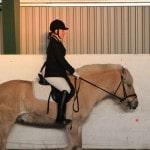 Kvikk rideskolestevne desember 2013