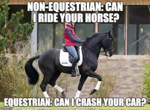Min hest